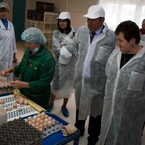 """Светлана Орлова: """"Сельское хозяйство - один из ключевых моментов региональной экономики"""""""